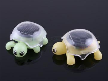 Solar Motion Tortoise